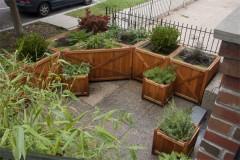 Courtyard Container Garden